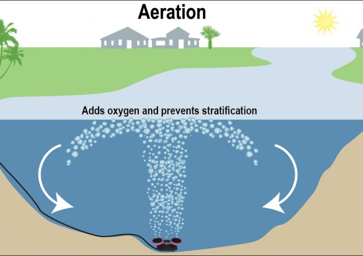 aeration for algae graphic