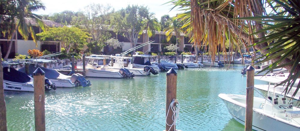 aeration for marinas and canals in the Florida Keys