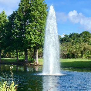 vertex GeyserJet lake fountain up close