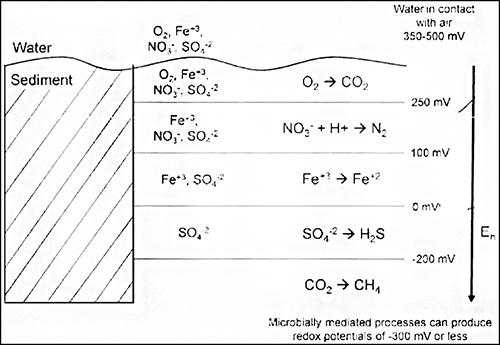 oxygen debt levels